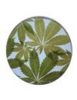 Pop Tin - Leaf On Blue
