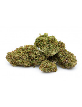 Harliquin CBD hemp flower buds 1 grams indoor grown (100% legal in the United Kingdom and EU)