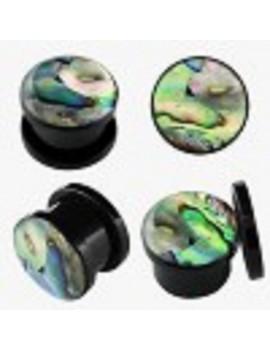 Acrylic Sea Shell Plugs
